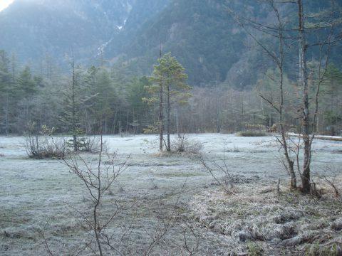 霜の田代池