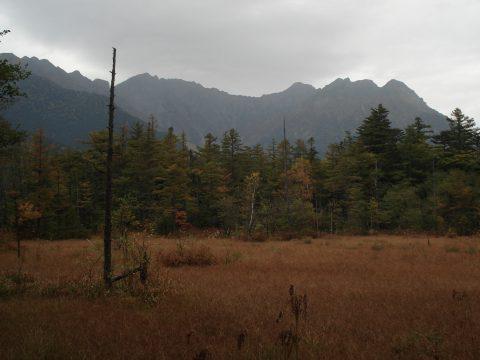 9月末の田代湿原