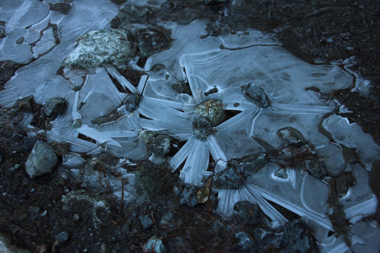 凍った水たまりの水