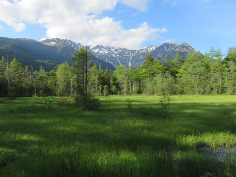 穂高連峰と田代湿原