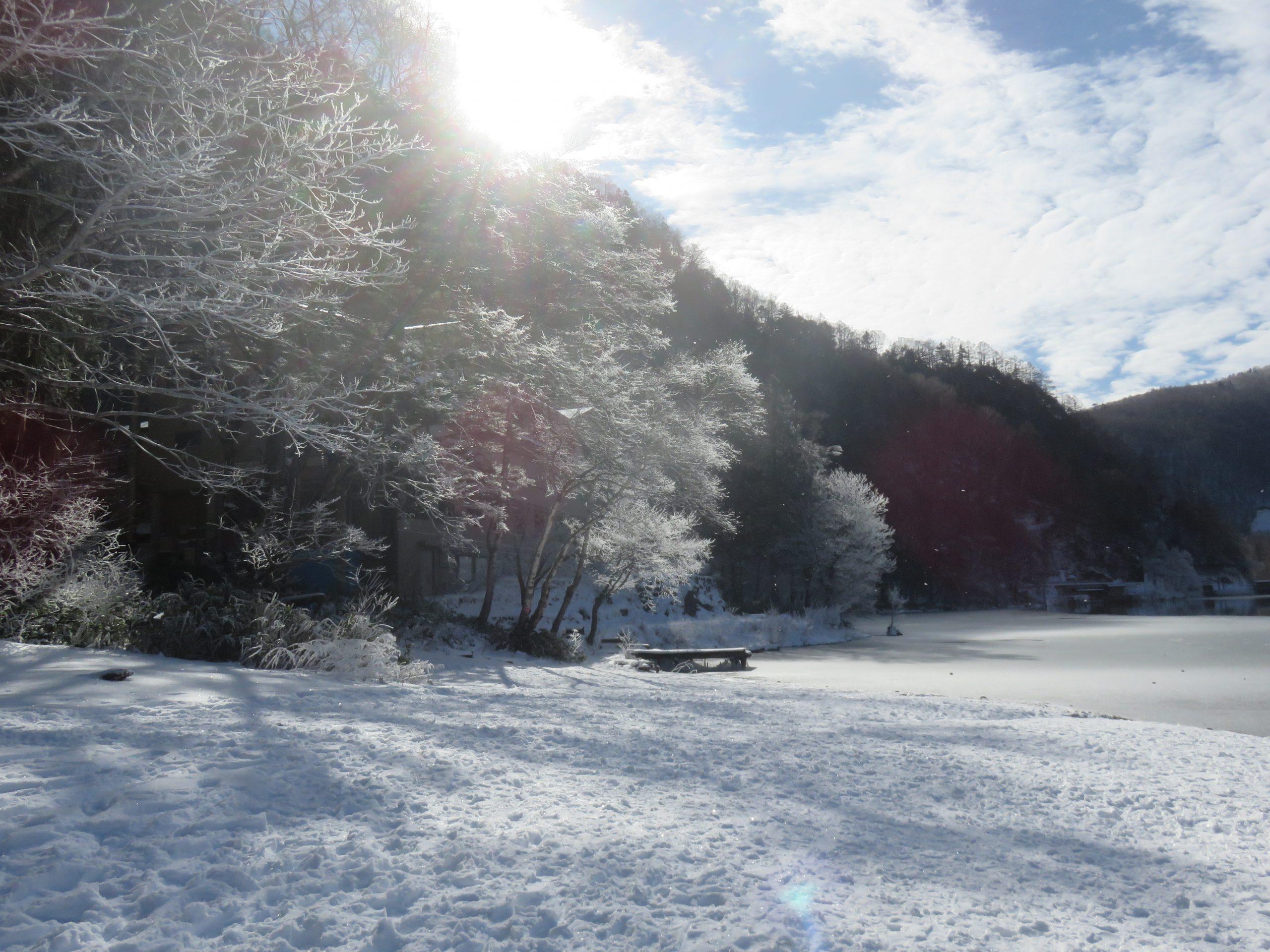 大正池畔の樹霜