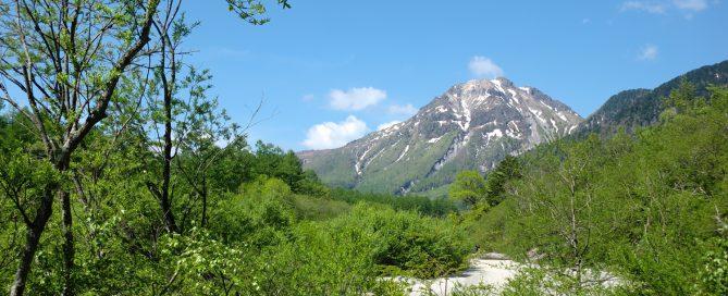 焼岳と新緑