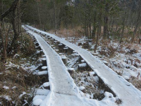 凍結した木道