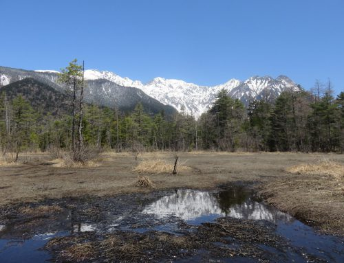 【上高地開山まであと22日】4月の雪と氷