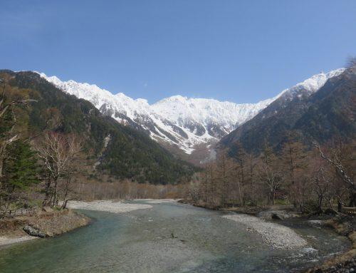 穂高連峰が新雪をかぶりました!~4月末の上高地~