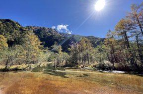 【紅葉最新情報!】上高地の田代池周辺のカラマツの黄葉が見頃です!